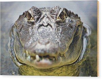 Crocodile Eyes Wood Print by Ellen van Bodegom