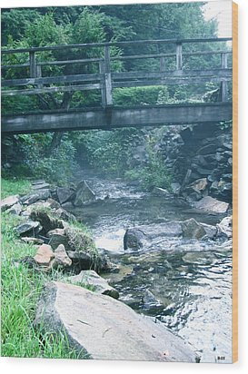 Cross The Stream Wood Print by Debra     Vatalaro