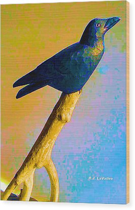 Crow At Rest Wood Print by Roland LaVallee