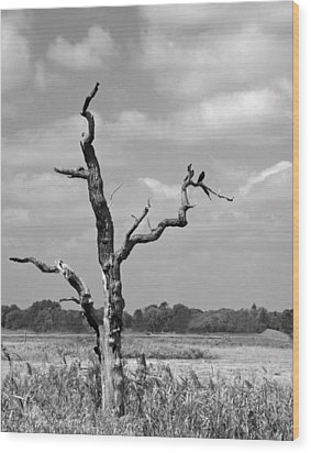 Wood Print featuring the photograph Crow In Dead Tree by Brooke T Ryan