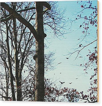 Wood Print featuring the photograph Crows In For Landing by Pamela Hyde Wilson