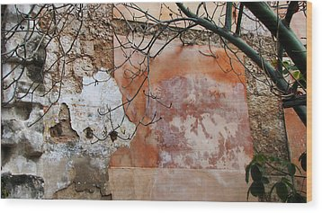 Crumbling Wall Wood Print by Kimberley Bennett