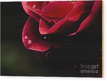 Wood Print featuring the photograph Crying Rose by Tamera James