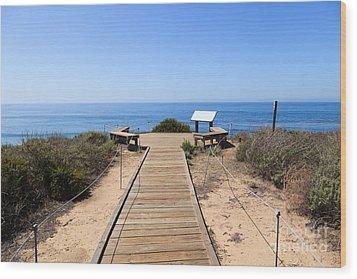 Crystal Cove State Park Ocean Overlook Wood Print by Paul Velgos