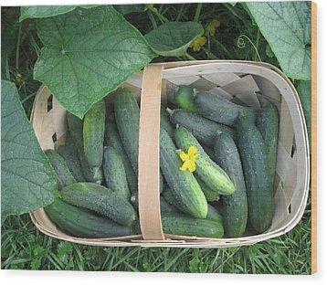 Cucumbers In Garden Basket Wood Print