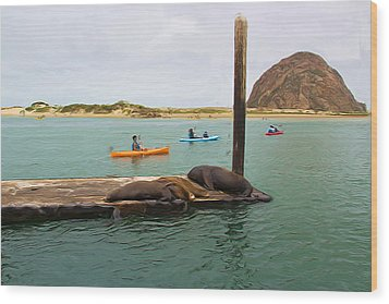 Curious About Sea Lions Wood Print by Heidi Smith