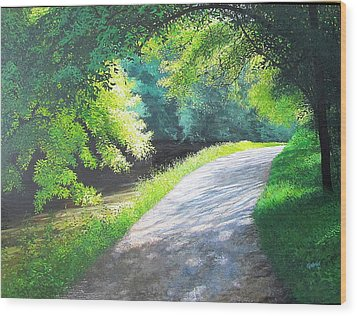 Curve Canal And Sunlight Wood Print by David Bottini