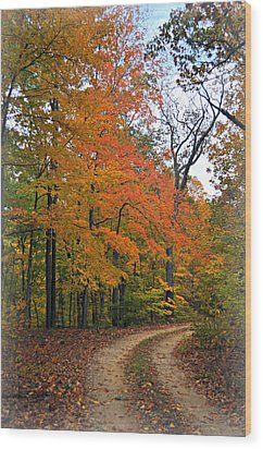 Curve In Fall Wood Print by Marty Koch