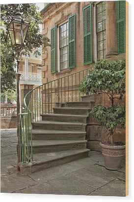 Curved Steps In Savannah Wood Print by Sandra Anderson