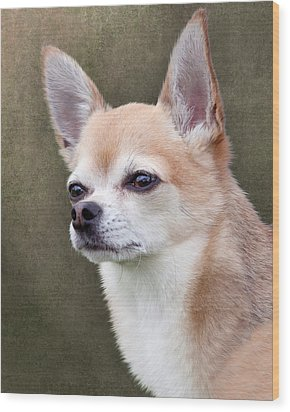 Wood Print featuring the photograph Cute Fawn Chihuahua Dog by Ethiriel  Photography