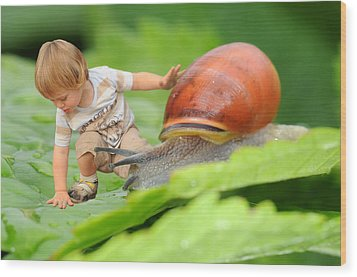 Cute Tiny Boy Playing With A Snail Wood Print by Jaroslaw Grudzinski