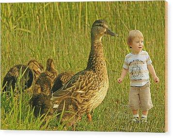 Cute Tiny Boy Playing With Ducks Wood Print by Jaroslaw Grudzinski