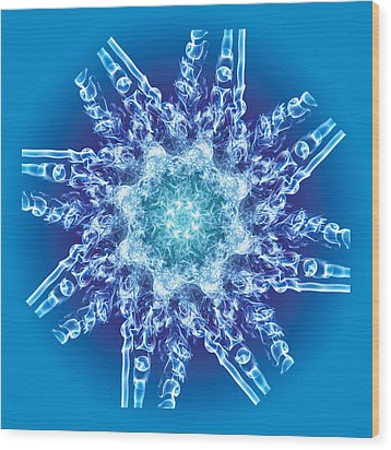 Cyanide Snowflake Wood Print by Val Black Russian Tourchin