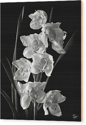Wood Print featuring the photograph Cymbidium Cluster In Black And White by Endre Balogh