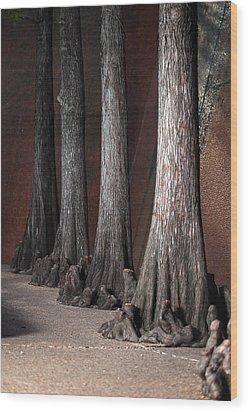 Cypress Wood Print by Greg Kopriva