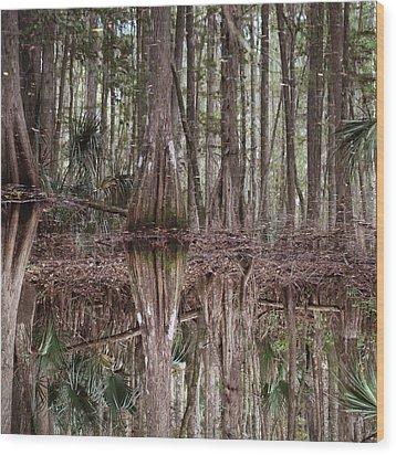 Cypress Hammock Wood Print by Joseph G Holland
