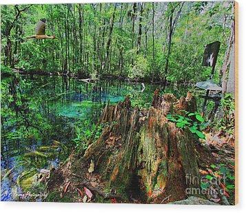 Cypress Stump At Buford Spring Wood Print by Barbara Bowen