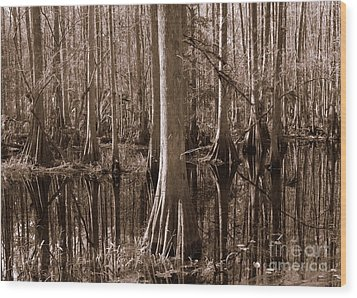 Cypress Swamp Reflection In Sepia Wood Print by Carol Groenen
