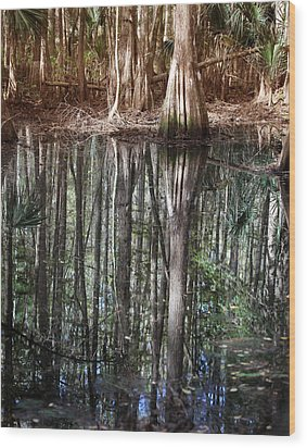 Cypress Swamp Reflections Wood Print by Joseph G Holland