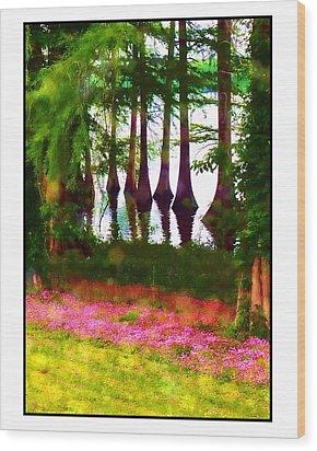 Cypress With Oxalis Wood Print by Judi Bagwell