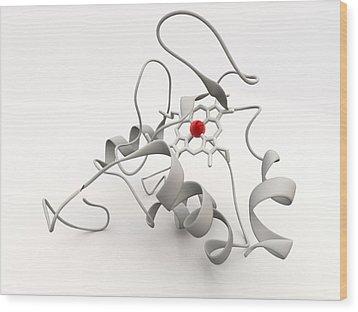 Cytochrome C Wood Print by Phantatomix