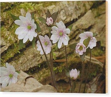 Dainty Flowers Wood Print