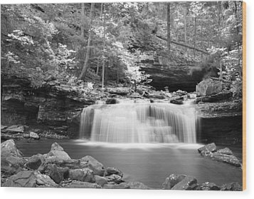 Dainty Waterfall Wood Print by David Troxel