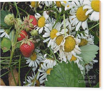 Daisies And Strawberries Wood Print by Vicky Tarcau