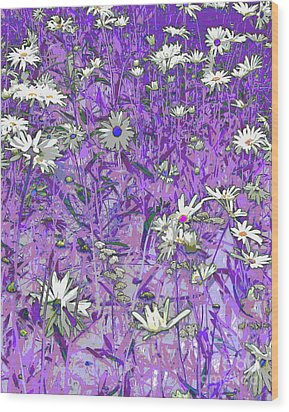 Daisies Wood Print by Anne Havard
