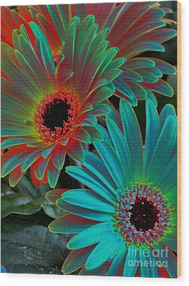 Daisies From Another Dimension Wood Print by Rory Sagner