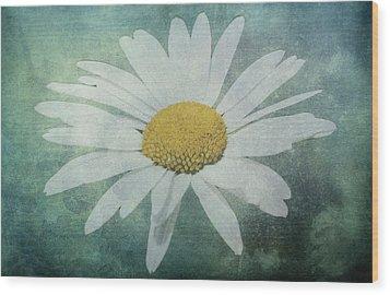 Daisy Wood Print by Dawn OConnor