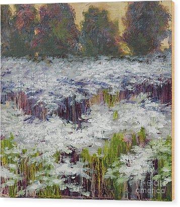 Daisy Field Wood Print