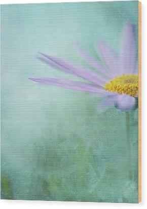 Daisy In Mist Wood Print by Sharon Lapkin