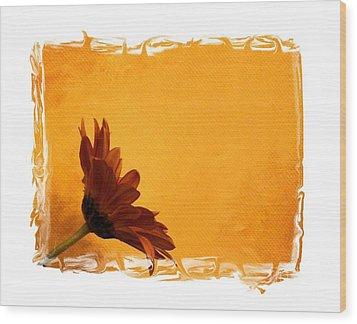 Daisy In The Yellow Corner Wood Print by Marsha Heiken