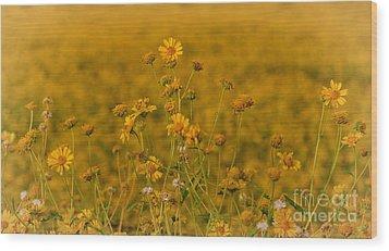 Daisy's Wood Print by Donna Greene