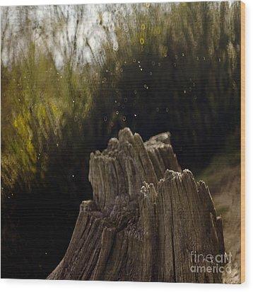 Dancing Flies Wood Print by Angel  Tarantella