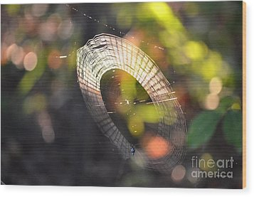 Dappled Web Of Deceit Wood Print by Maria Urso