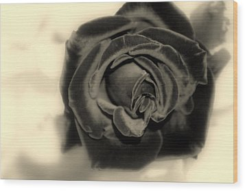 Wood Print featuring the photograph Dark Beauty by Kay Novy