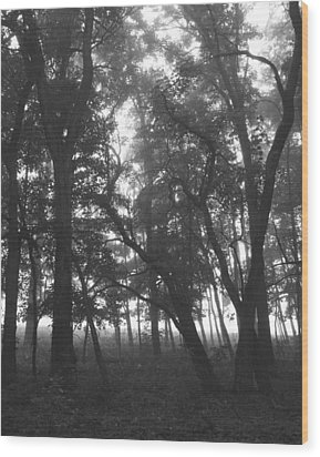Wood Print featuring the photograph Dark  Shadows II by Penny Hunt