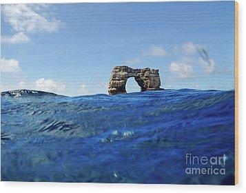 Darwin's Arch By Sea Level Wood Print by Sami Sarkis