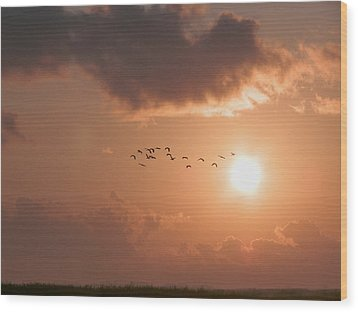 Dawn Flight Wood Print
