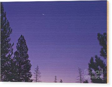 Dawn From My Window Wood Print by Janie Johnson
