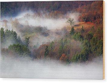 Wood Print featuring the photograph Dawn Mists Slovenia by Graham Hawcroft pixsellpix