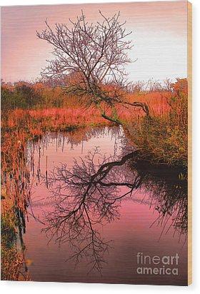 Dawn On The Marsh Wood Print by Nick Zelinsky