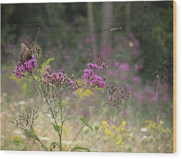 Day In The Meadow Wood Print by Trendle Ellwood