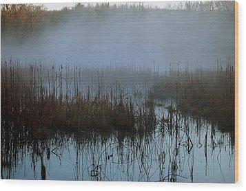 Daybreak Marsh Wood Print