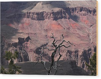 Dead Tree At The Canyon Wood Print