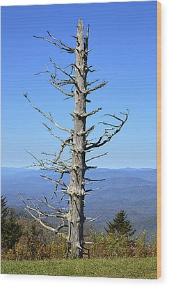 Dead Tree Wood Print by Susan Leggett