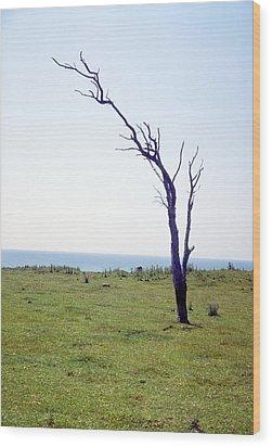 Dead Tree Wood Print by Victor De Schwanberg