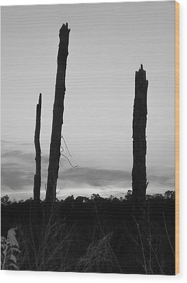 Dead Trees Against The Evening Skies Wood Print by Floyd Smith